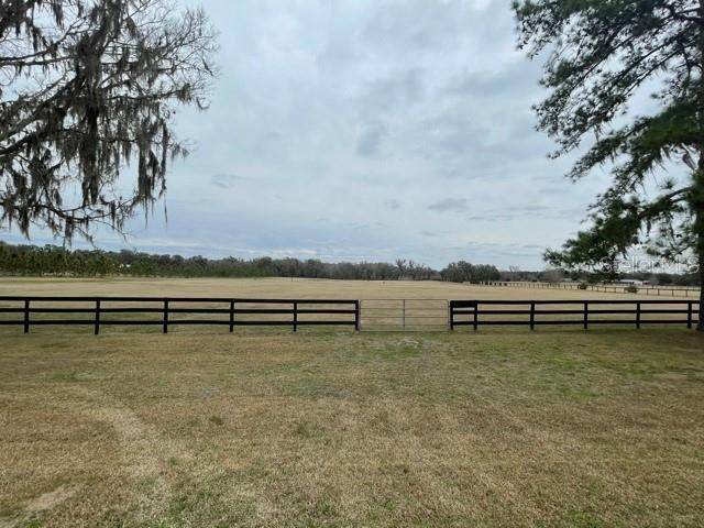 0 NW Highway 316, Reddick, FL 32686 (MLS #OM613886) :: Griffin Group