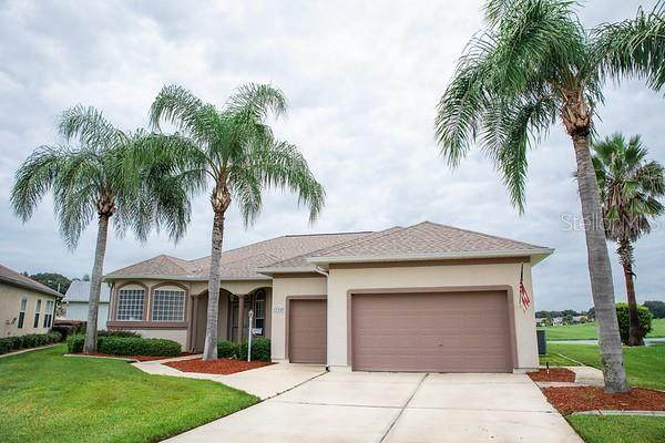 17940 SE 117TH Terrace, Summerfield, FL 34491 (MLS #OM613957) :: Frankenstein Home Team