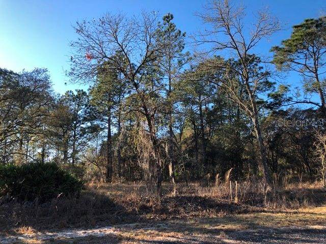 Lot 31 SE 133 Terrace, Dunnellon, FL 34431 (MLS #OM614193) :: Sarasota Home Specialists