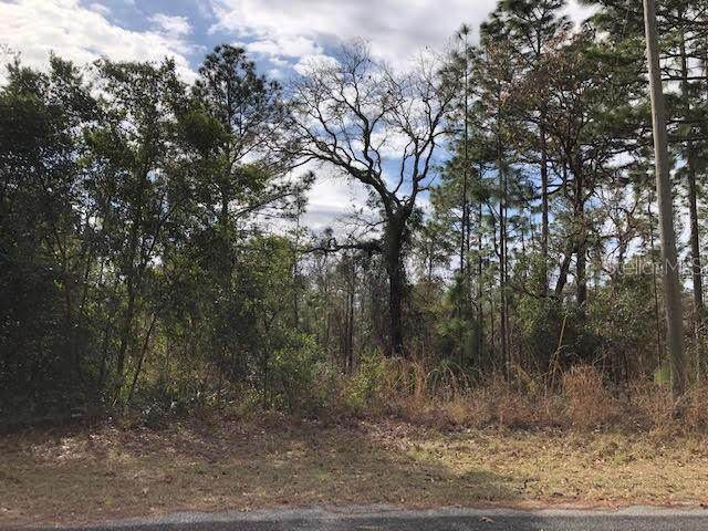 O-Sw Lemon Hill Dr, Dunnellon, FL 34431 (MLS #OM614905) :: BuySellLiveFlorida.com