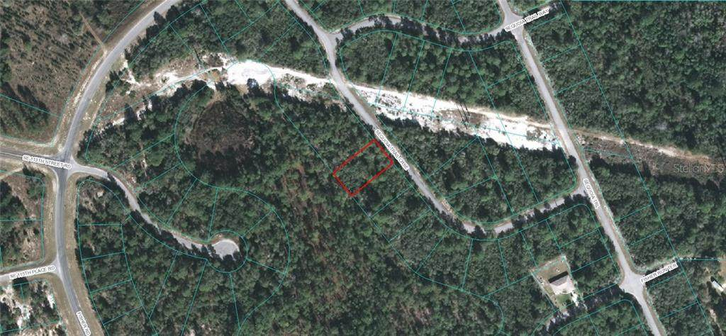 TBD Sequoia Trail Course - Photo 1