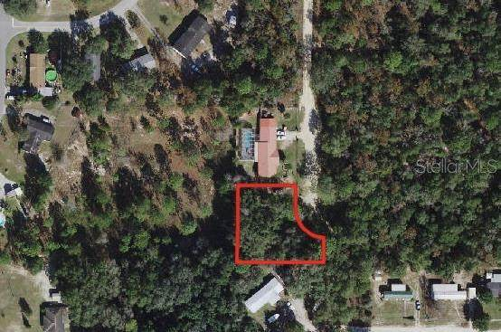 TBD SE 102ND Terrace, Belleview, FL 34420 (MLS #OM616125) :: The Duncan Duo Team
