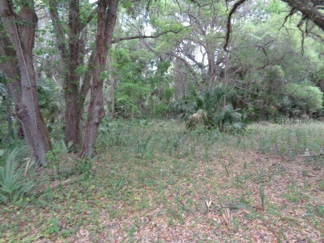 0 E County Rd 325, CROSS CREEK, FL 32640 (MLS #OM617232) :: Vacasa Real Estate
