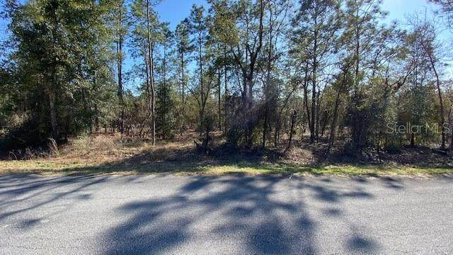 TBD NW Hemlock Avenue, Dunnellon, FL 34431 (MLS #OM617325) :: The Lersch Group