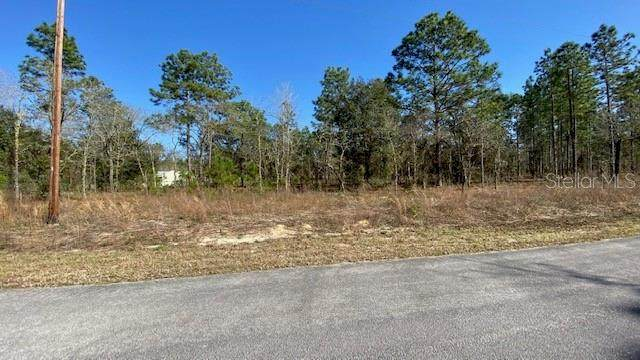 TBD SW Hilliard Ave, Dunnellon, FL 34431 (MLS #OM617445) :: The Lersch Group