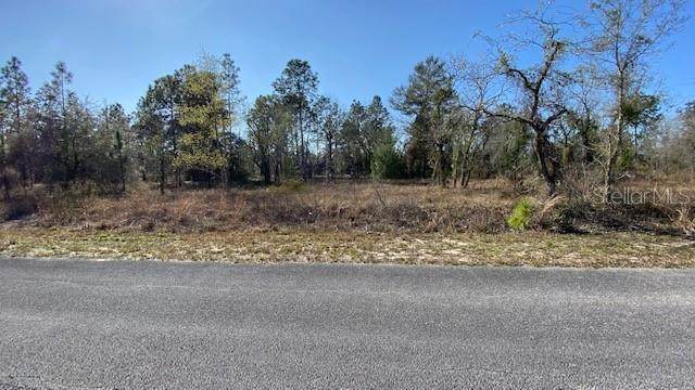 TBD SW Harbor Hills Road, Dunnellon, FL 34431 (MLS #OM617447) :: The Lersch Group