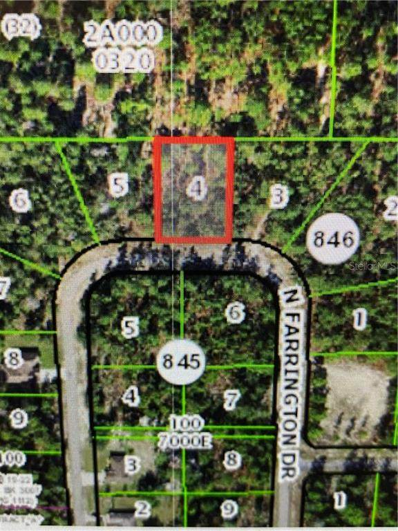 8949 N Farrington Drive, Citrus Springs, FL 34433 (MLS #OM618426) :: The Lersch Group