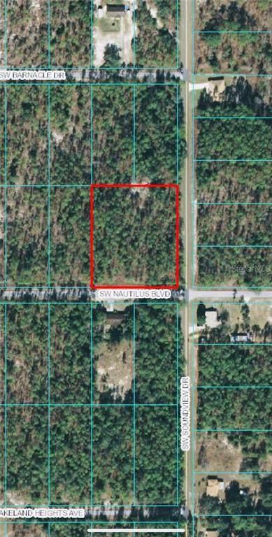 00 SW Nautilus Boulevard, Dunnellon, FL 34431 (MLS #OM618540) :: Frankenstein Home Team