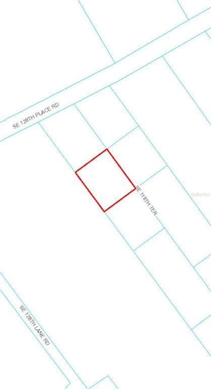 12870 SE 118TH Terrace, Ocklawaha, FL 32179 (MLS #OM619273) :: Premier Home Experts