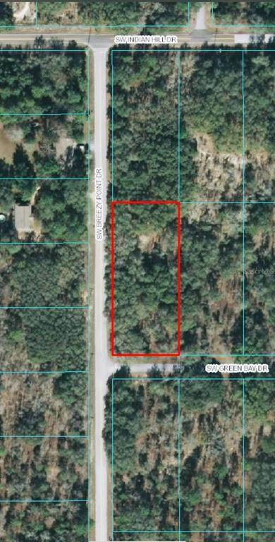 00 SW Green Bay Drive, Dunnellon, FL 34431 (MLS #OM619415) :: Southern Associates Realty LLC