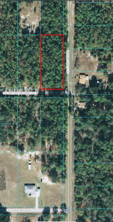 00 SW Lakeland Heights Avenue, Dunnellon, FL 34431 (MLS #OM619417) :: Armel Real Estate