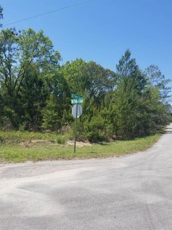 0 SE Fisher Course, Ocklawaha, FL 32179 (MLS #OM619538) :: Rabell Realty Group