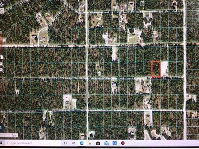 0 SW 75 STREET, Dunnellon, FL 34432 (MLS #OM619615) :: Realty One Group Skyline / The Rose Team