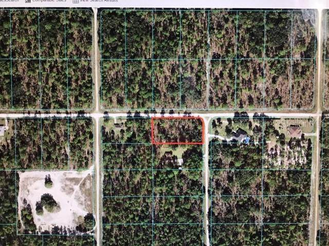 0 SW 125 TERRACE, Dunnellon, FL 34432 (MLS #OM619656) :: RE/MAX Local Expert