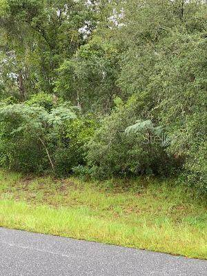 0 SW MARION OAKS TRL, Ocala, FL 34473 (MLS #OM619864) :: Bustamante Real Estate