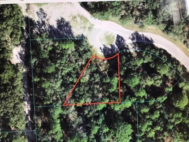 0 SW 65 TERRACE Road, Ocala, FL 34473 (MLS #OM620175) :: Southern Associates Realty LLC
