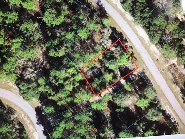 0 SW 65 AVENUE Road, Ocala, FL 34473 (MLS #OM620183) :: Southern Associates Realty LLC