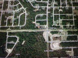 7370 SW 133 Loop, Ocala, FL 34473 (MLS #OM620206) :: Better Homes & Gardens Real Estate Thomas Group