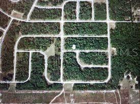 0 SW 148 Street, Ocala, FL 34473 (MLS #OM620209) :: Better Homes & Gardens Real Estate Thomas Group