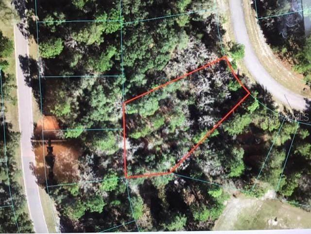 SE 152 LANE Road, Ocala, FL 34473 (MLS #OM620223) :: The Lersch Group