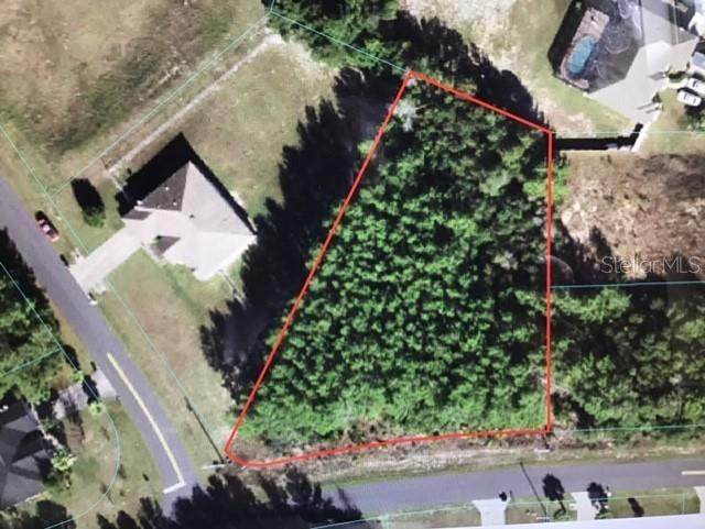 SW 103 Lane, Ocala, FL 34476 (MLS #OM620249) :: Armel Real Estate