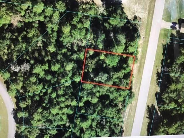 Marion Oaks Lane, Ocala, FL 34473 (MLS #OM620269) :: Better Homes & Gardens Real Estate Thomas Group