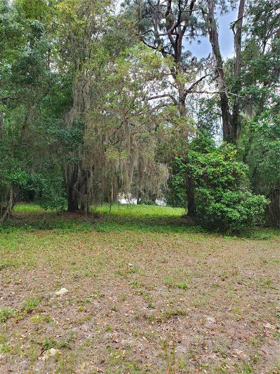 00 Se 146Th Terrace Road, Ocklawaha, FL 32179 (MLS #OM620304) :: Team Pepka