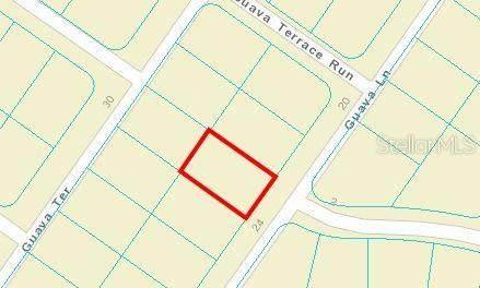 00 Guava Lane, Ocklawaha, FL 32179 (MLS #OM620336) :: CARE - Calhoun & Associates Real Estate