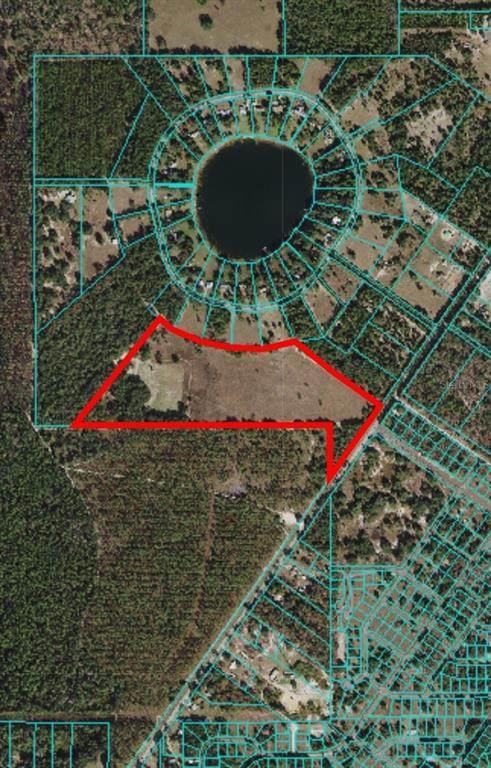 Hwy 464C, Ocklawaha, FL 32179 (MLS #OM620808) :: The Robertson Real Estate Group