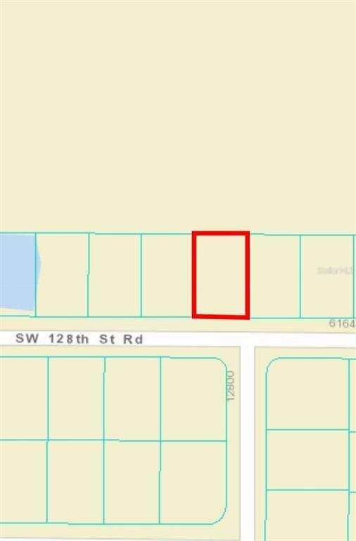SW 128TH STREET Road, Ocala, FL 34473 (MLS #OM620823) :: Coldwell Banker Vanguard Realty