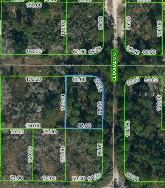 251 Tannery Lane, Lake Placid, FL 33852 (MLS #OM620869) :: Everlane Realty