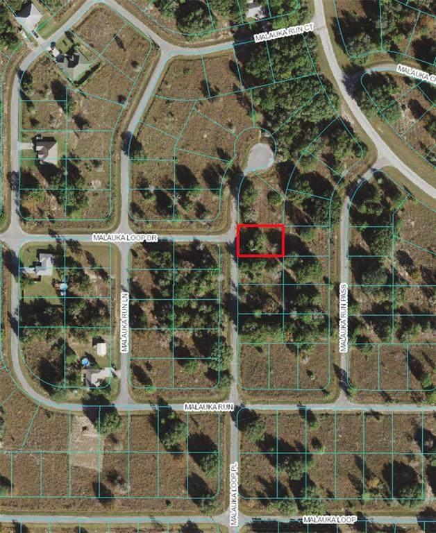Malauka Loop Place, Ocklawaha, FL 32179 (MLS #OM621177) :: RE/MAX Local Expert