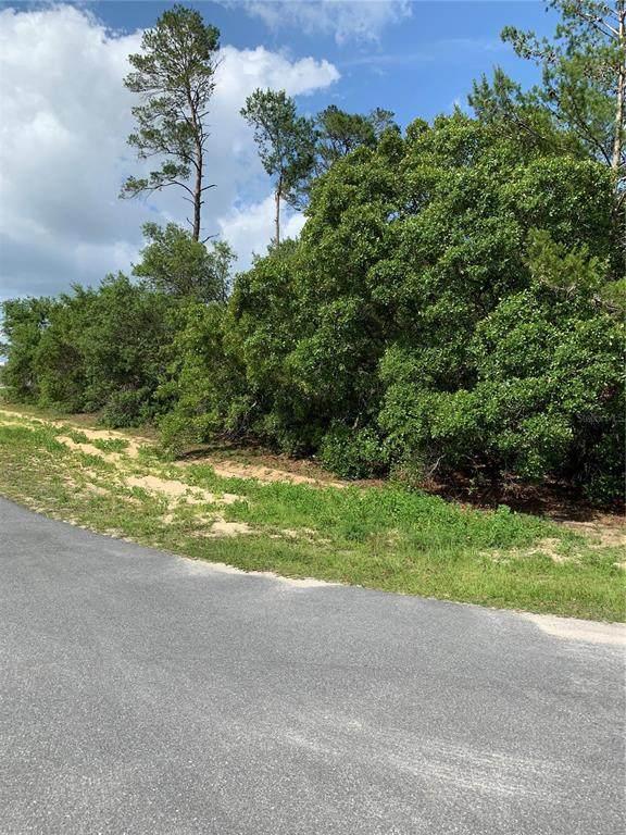 0 SW Carnation Court, Dunnellon, FL 34431 (MLS #OM621249) :: Frankenstein Home Team