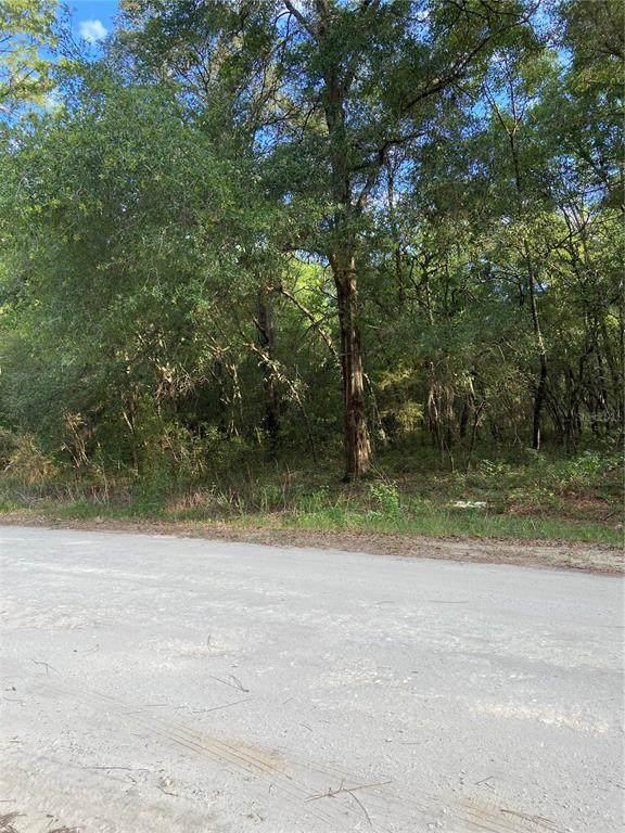 TBD 51 Lane - Photo 1