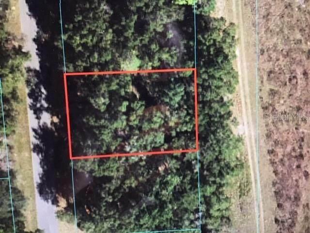 0 SW 168 LOOP, Ocala, FL 34473 (MLS #OM621540) :: Coldwell Banker Vanguard Realty