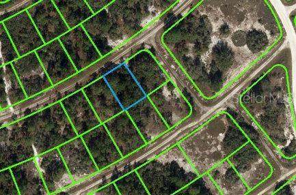 389 Showboat Avenue, Lake Placid, FL 33852 (MLS #OM621738) :: The Price Group