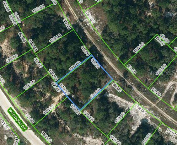 352 Summer Hill Drive, Lake Placid, FL 33852 (MLS #OM621761) :: The Price Group