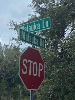 0 Malauka Road, Ocklawaha, FL 32179 (MLS #OM621903) :: Kelli and Audrey at RE/MAX Tropical Sands