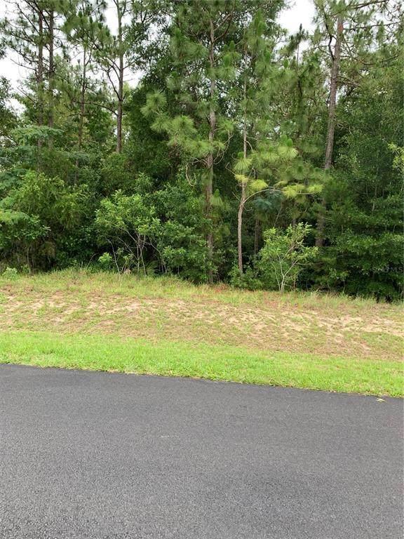 0 SW 43 STREET Road, Ocala, FL 34474 (MLS #OM621995) :: Better Homes & Gardens Real Estate Thomas Group
