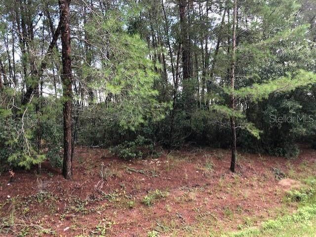 4348 SW 112 Lane, Ocala, FL 34476 (MLS #OM622197) :: Better Homes & Gardens Real Estate Thomas Group