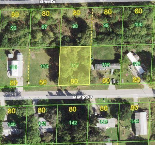 15492 Mango Drive, Punta Gorda, FL 33955 (MLS #OM622309) :: Carmena and Associates Realty Group