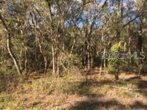 Lot 9 Locust  Radl, Ocala, FL 34472 (MLS #OM622476) :: RE/MAX Elite Realty
