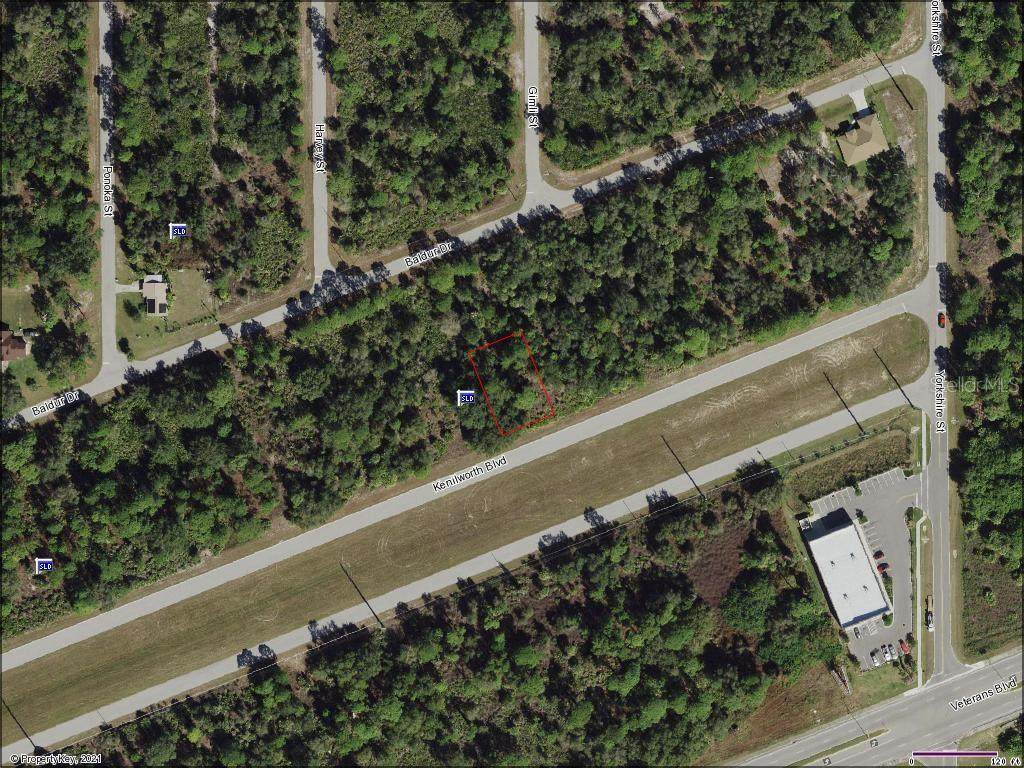 20604 Kenilworth Boulevard - Photo 1