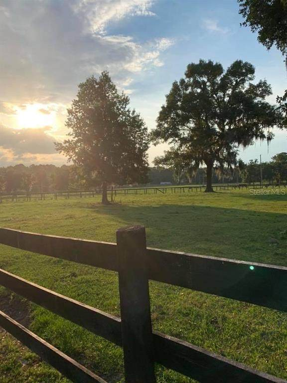 Reddick, FL 32686 :: Premium Properties Real Estate Services