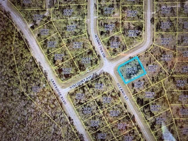 2130 Oceano Street, Lehigh Acres, FL 33972 (MLS #OM623867) :: Everlane Realty