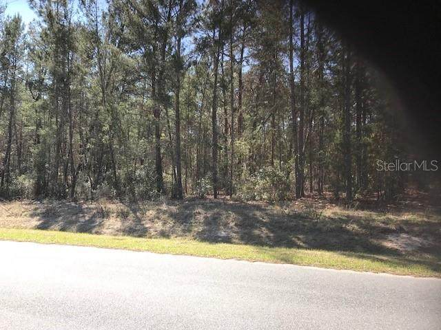 SW 131 ST Lane, Ocala, FL 34473 (MLS #OM623906) :: RE/MAX Elite Realty