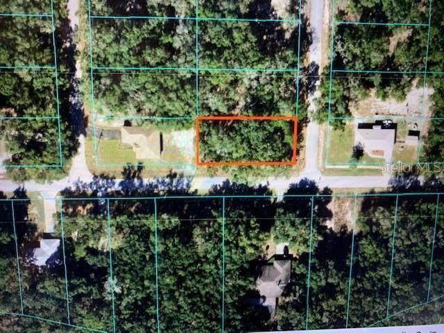 Clearwater Ct, Dunnellon, FL 34431 (MLS #OM623941) :: Frankenstein Home Team