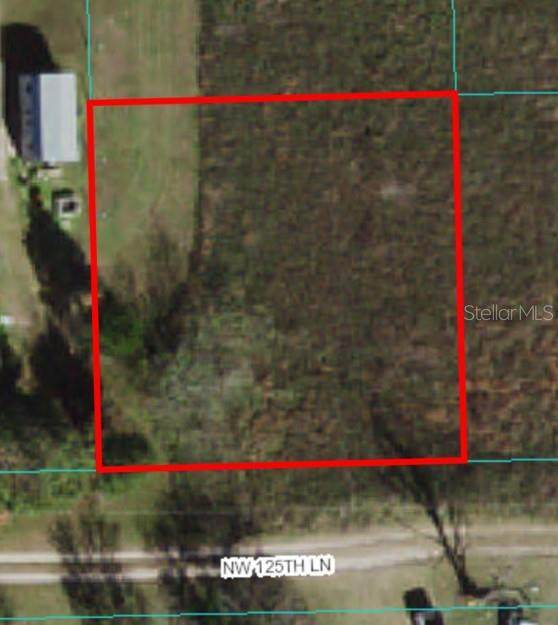 Lot 41 NW 125TH Lane, Citra, FL 32113 (MLS #OM624273) :: Vacasa Real Estate
