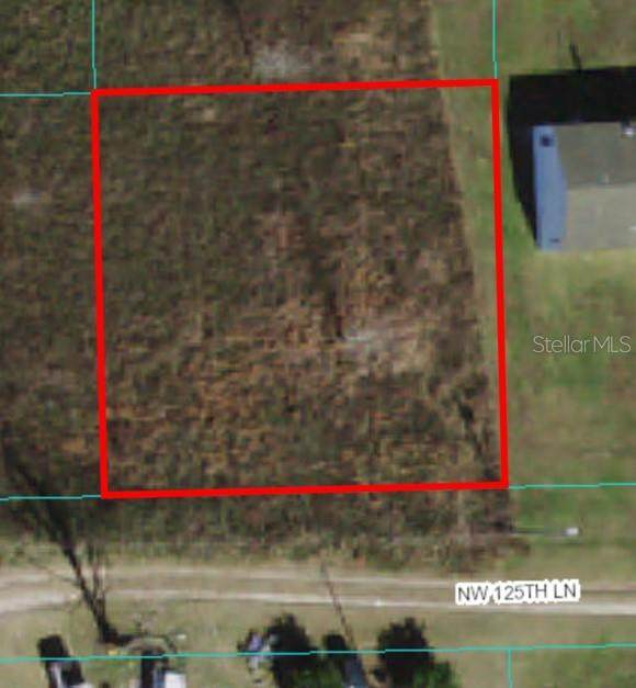 Lot 43 NW 125TH Lane, Citra, FL 32113 (MLS #OM624275) :: Better Homes & Gardens Real Estate Thomas Group