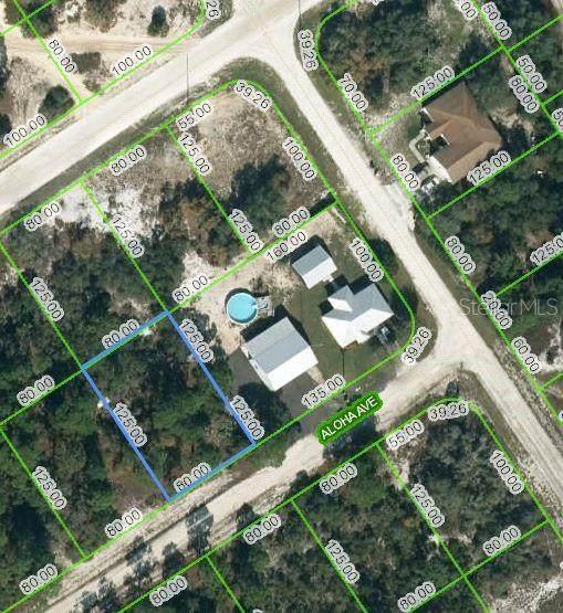 454 Aloha Avenue, Lake Placid, FL 33852 (MLS #OM624371) :: EXIT Realty Positive Edge